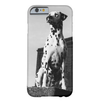 sweet dog Dalmatien Barely There iPhone 6 Case