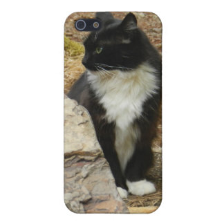 Sweet Feral Tuxedo Cat iPhone 5 Case