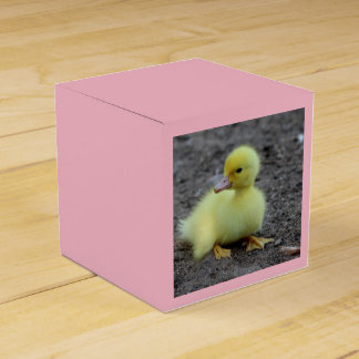 Sweet Fluffy Duckling Yellow Favour Box