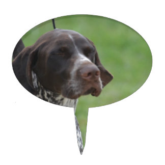 german shorthaired pointer wedding cake topper three pointer cake toppers three pointer cake picks 14674