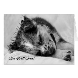 Sweet Get Well for Pet Lover with Sleeping Puppy Greeting Card