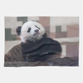 Sweet Giant Panda Baby Towel