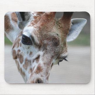 Sweet Giraffe Mouse Pad