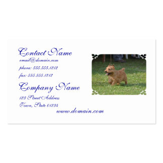 Sweet Glen of Imaal Terrier Double-Sided Standard Business Cards (Pack Of 100)