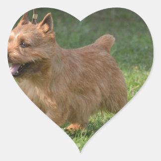 Sweet Glen of Imaal Terrier Heart Sticker