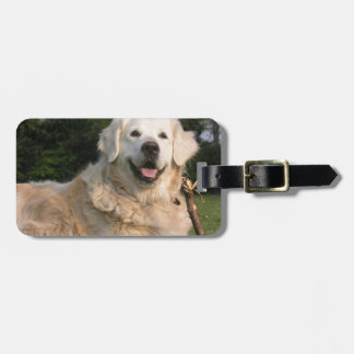 Sweet Golden Retriever Luggage Tag