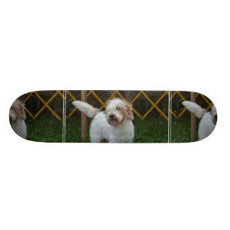 Sweet Grand Basset Dog Skateboard Decks