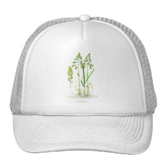 Sweet Grass Botanical Mesh Hat