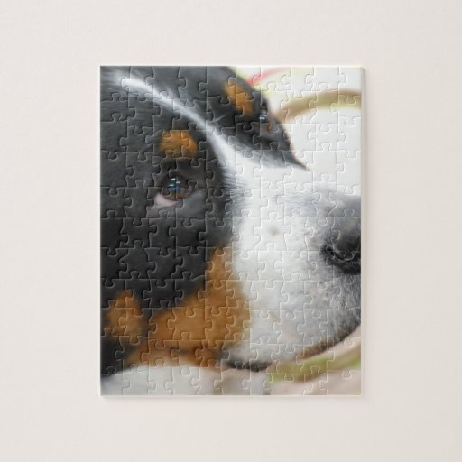 Sweet Greater Swiss Mountain Dog Puzzle
