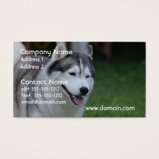 Sweet Husky Business Card