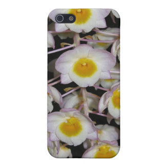SWEET CASES FOR iPhone 5
