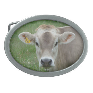 Sweet Jersey Cow Oval Belt Buckle