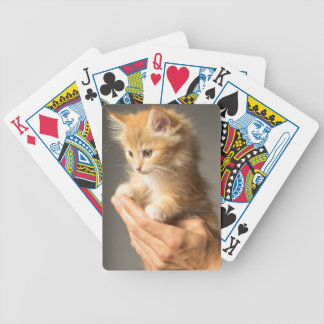 Sweet Kitten in good Hand Bicycle Playing Cards