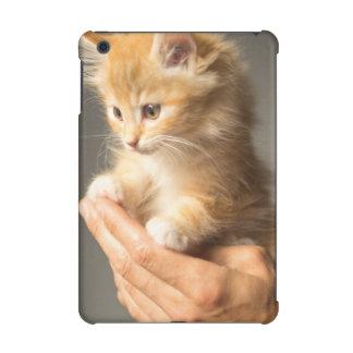 Sweet Kitten in Good Hand iPad Mini Retina Case