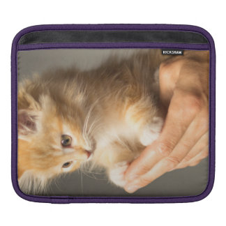 Sweet Kitten in Good Hand iPad Sleeve