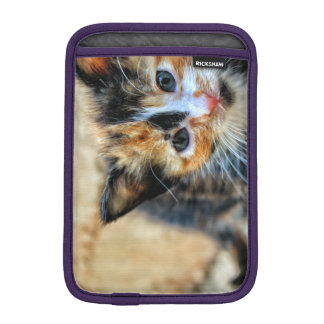 Sweet Kitten looking at YOU iPad Mini Sleeve