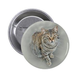 Sweet Kitty Pinback Button