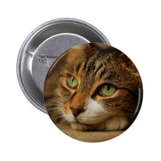 Sweet Kitty Cat Pin