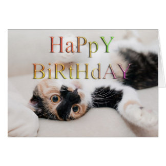 Sweet kitty happy birthday greeting card