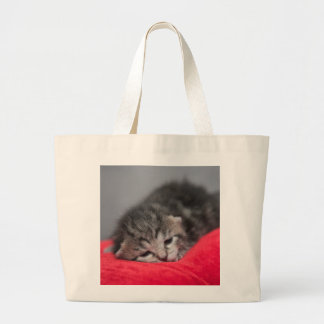 Sweet kitty jumbo tote bag