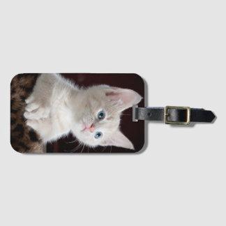 Sweet kitty luggage tag