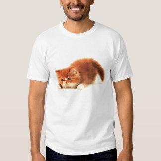 Sweet kitty t-shirt
