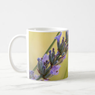 Sweet lavender coffee mug