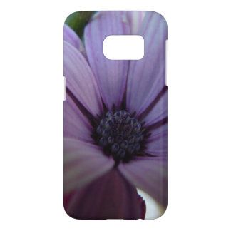 Sweet Lavender Daisy