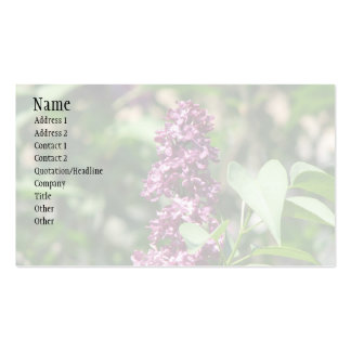 Sweet Lilac Pack Of Standard Business Cards