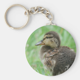 Sweet little duckling basic round button key ring