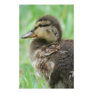 Sweet little duckling stationery