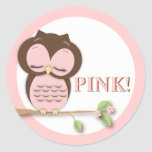 Sweet Little Girl Owl on a Branch Team PINK! Stickers