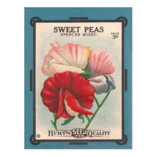 Sweet Peas Post Card