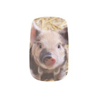 sweet piglet nail wrap