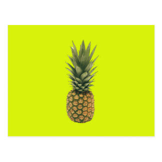 Sweet Pineapple Postcard