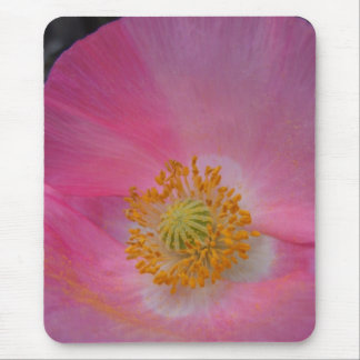 Sweet Pink Poppy Mouse Pad