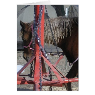 Sweet Pony at County Fair Ride - Blank Inside Card