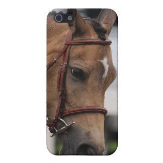 Sweet Pony  iPhone 4 Case