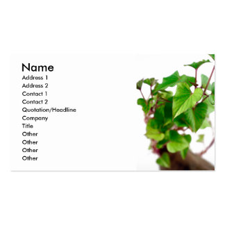Sweet potato sprouts business card templates