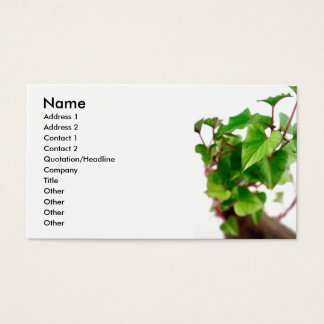 Sweet potato sprouts business card