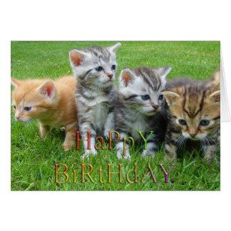 Sweet puppies kitties photo greeting card
