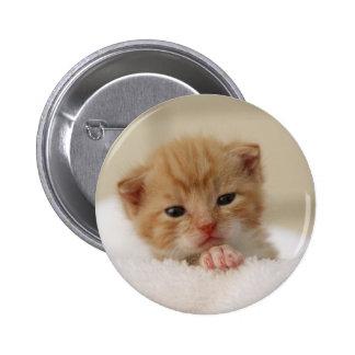 Sweet puppy kitty 6 cm round badge