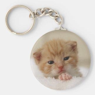 Sweet puppy kitty basic round button key ring