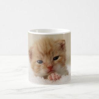 Sweet puppy kitty basic white mug