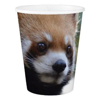 Sweet Red Panda Bear Paper Cup