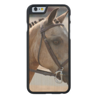 Sweet Roan Pony Carved® Maple iPhone 6 Case