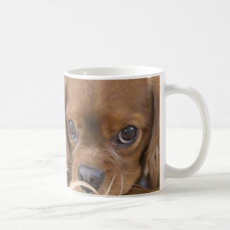 Sweet Ruby Cavalier King Charles Spaniel Coffee Mug