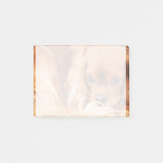 Sweet Ruby Cavalier King Charles Spaniel Post-it Notes