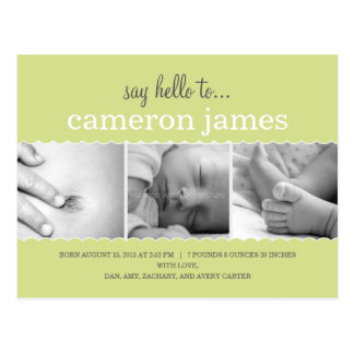 Sweet Scallops Birth Announcement - Neutral Gender Postcard