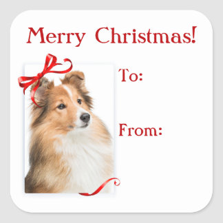 Sweet Sheltie Christmas Gift Stickers